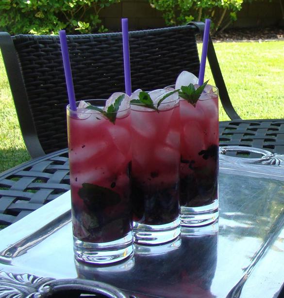 Blueberry Lavender Mojito2
