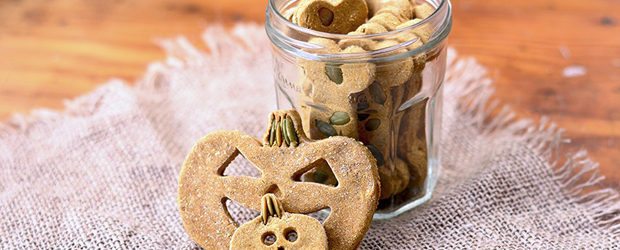 Pumpkin Spice Dog Treats