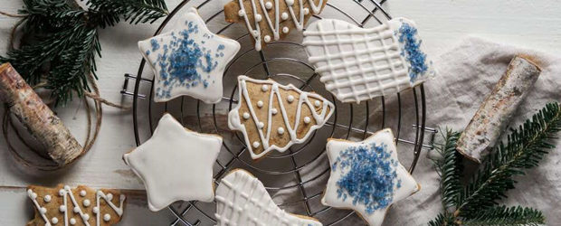 grain-free-christmas-cutout-cookies1