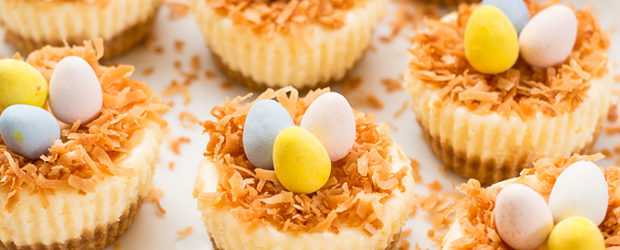 Easter Bird's Nest Mini Cheesecakes