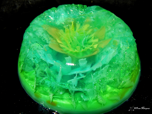 Homemade artistic jelly