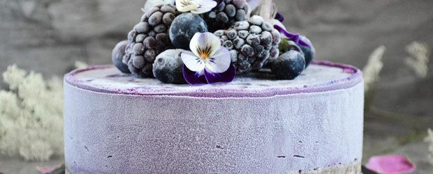 Blueberry mini cheesecake